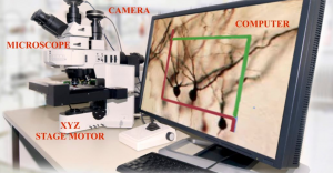 microscope with image on computer screen