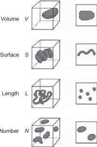 volume surface length number